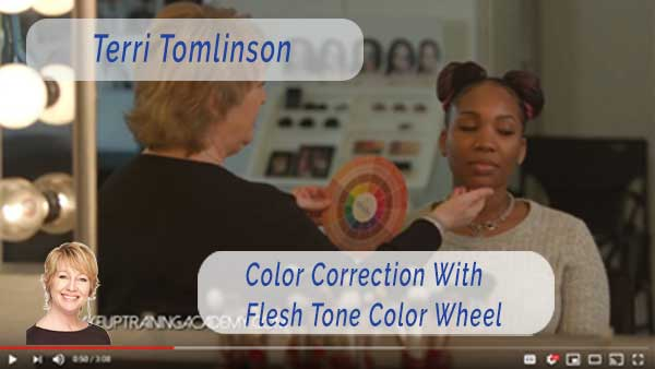 Flesh Tone Color Wheel Terri Tomlinson